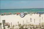 Pineapple Willys Beach Webcam