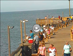 Avalon Pier Webcam 2